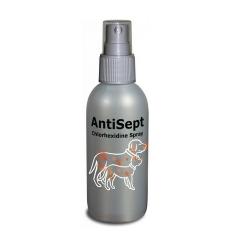 Spray Désinfectant Antisept pour Chien et Chat (6)