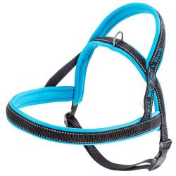 Arnes Sport Dog Blue P Ferplast
