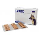 vetplus-Lypex pour Chien et Chat (1)