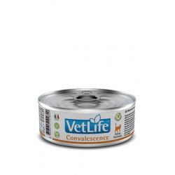 Farmina Vet Life Cat Convalescence dieta húmeda para gatos 12x85grs